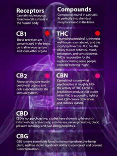 CB1, CB2, THC, CBN, CBD and CBG defined