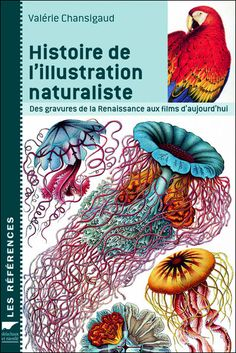 Histoire de l'illustration naturaliste - History of naturalist illustration