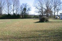 Great building lot in the Saltillo Community. Within walking distance to the Tennessee River! Perfect Get-a-way! in Saltillo TN