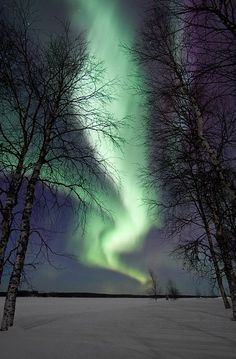 #1 Aurora Borealis (Kuusamo, Finland)