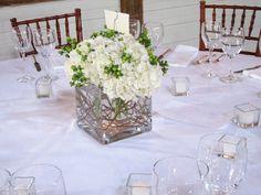 weiße Hortensien mit grünen Blumen sehen sehr frisch aus