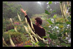 Deb Soule teaching in Black Cohosh at beautiful Avena Botanicals.