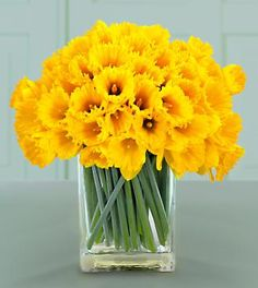 Daffodils, they grow wild here,and I love to put them in vases for color