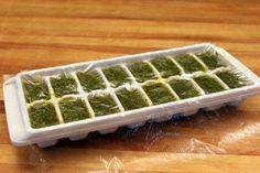 How to freeze pesto. Gotta use up these garden herbs! Freezing Pesto, Freezing Fruit, Recipes Using Pesto, Pesto Recipe, Pesto Dip, Basil Pesto, Slider Sandwiches, How To Make Pesto, Food Garnishes