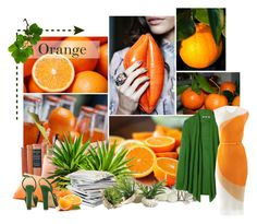 """""""Orange"""" by farfalla13 ❤ liked on Polyvore featuring Aroma, Uniqlo, Shabby Chic, Knoll, Mimco, Public Library and STELLA McCARTNEY"""