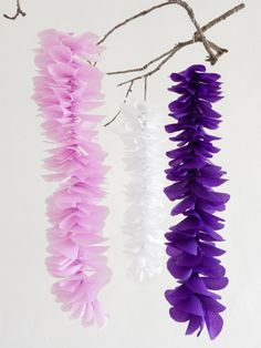 Paper flower backdrop tissue wisteria backdrop photo by justyrs