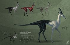 #xenobiology Another amazing xenobiology by Zhrayde on DeviantArt. 'Blacked Horned Gazelle Ortho'