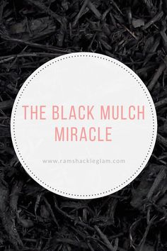 How To Use Black Mulch In Your Yard Landscaping - Ramshackle Glam Mulch Landscaping, Front Yard Landscaping, Landscaping Ideas, Mulch Ideas, Black Mulch, Backyard Trampoline, Free Plants, Annual Plants, Plant Nursery