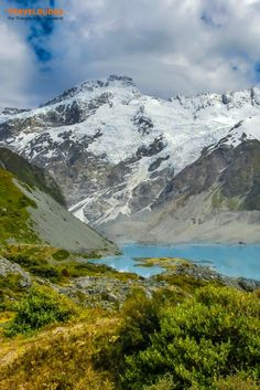 An offbeat guide to the best of New Zealand's South Island including stops in the Otago Peninsula, Sandfly Bay, and the Okia Reserve. Practical tips for your trip to New Zealand. | Blog by Travel Dudes: Community for Travelers, by Travelers!
