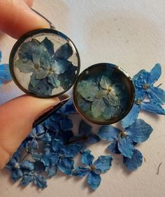 blue hydrangea rainbow steel resin plugs tunnels 1 inch. Etsy listing at https://www.etsy.com/listing/170730226/blue-hydrangea-flower-plugs-rainbow
