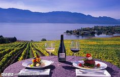 Tour the wineries of the Okanagan Valley from Kelowna, British Columbia The Places Youll Go, Places To Go, Seasons Activities, Beautiful Places In The World, Wine Country, Weekend Getaways, British Columbia, Wine Recipes, Things To Do