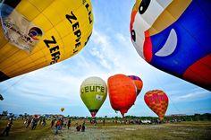 Balloons festival #adventure #adventuretime #balloons #balloonfestival #colorful #discover #drobosummer #exploremalaysia #explore #fun #funtimes #hotairballoon #photo #photography #photogram #photooftheday #travelgram #traveling #travelphotography #travel #summer #malaysia festival