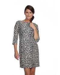 Jude Connally Shannon Dress in Navy Cheetah!