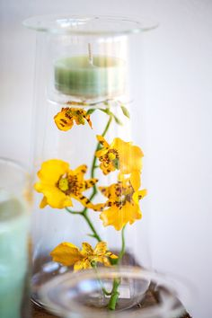 Get decorating your clear glass holders from our Clearly Creative range! Take a walk in the spring gardens and collect some little flowers, blossoms and twigs to create your own little spring garden indoors! http://www.partylite.co.uk/online-shop/shop-online-now.html