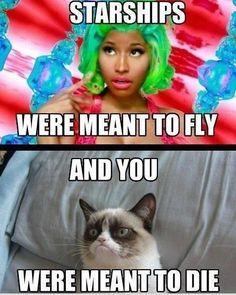 grumpy cat and Nicki Minaj