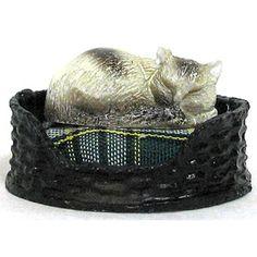 Miniature Cat in Bed