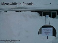 Meanwhile in Canada. is it sad that I would go do it. Canadian Memes, Canadian Things, I Am Canadian, Canadian Humour, Canada Jokes, Canada Funny, Canada 150, Canada Country, All About Canada