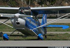 Champion 7GCBC Citabria aircraft picture