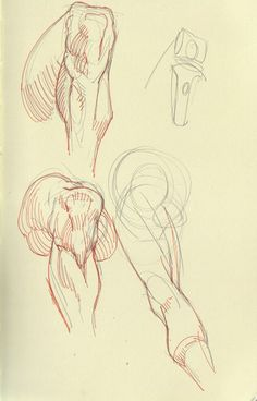 Learn To Draw People - The Female Body - Drawing On Demand Human Anatomy Drawing, Human Figure Drawing, Anatomy Study, Anatomy Art, Anatomy Reference, Drawing Reference, Drawing Legs, Life Drawing, Sculpture Lessons