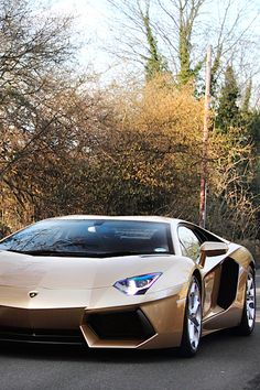 Lamborghini Aventador Gold.. want more? visit - http://themotolovers.com