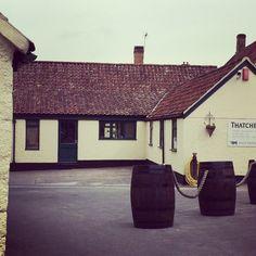 Thatchers Cider Farm, Somerset.