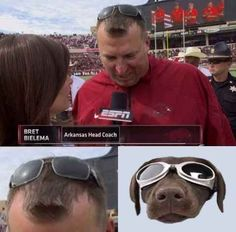 If this coach can have a cool-ass dog as his hair…