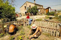 Entrevista a Esther Vivas sobre el sistema agrícola y alimentario y las alternativas que tenemos basadas en la soberanía alimentaria y el consumo crítico.