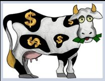 Looking For Your Cash Cow?