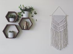 Hexaginal shelfs for wall Home Diy, Wall, Wall Boxes, Home Office Design, Wall Decor, Plant Wall, Living Wall Decor, Diy Home Decor, Plant Decor