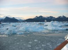 Alaskan cruise - nature at its best