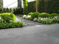 decking designs for small gardens Love Garden, Dream Garden, Garden Pots, Back Gardens, Outdoor Gardens, Formal Gardens, Small Gardens, Landscaping Plants, Outdoor Landscaping