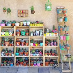 "2,532 Likes, 21 Comments - Cactus Magazine 🌵 (@cactusmagazine) on Instagram: ""Cactus by @lola_tiliches 🌵🌵🌵 VISIT our other magazines 👉🏼 @houseofmagazines"""