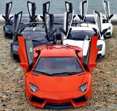 Hello from all Lamborghini