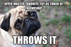 Aw. But they're so happy when you throw it. My dogs get angry if I keep it. It's just a loan.