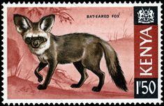 Bat Eared Fox, Stamp Catalogue, Wild Dogs, African Animals, East Africa, Postage Stamps, Kenya, Wildlife, Gallery