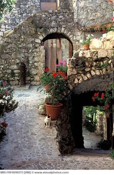 Provence ~ France  #www.frenchriviera.com