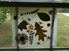 Wax Paper Nature Collage-for late summer fun~