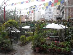 Book Hotel Florid Nepal, Kathmandu on TripAdvisor: See 144 traveler reviews, 25 candid photos, and great deals for Hotel Florid Nepal, ranked #42 of 175 hotels in Kathmandu and rated 4.5 of 5 at TripAdvisor.