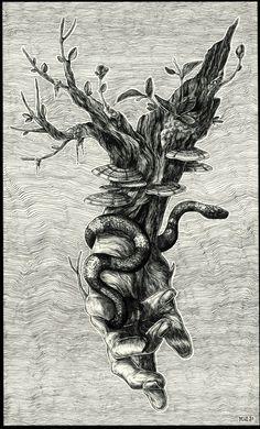 Diego Andrade // INK I