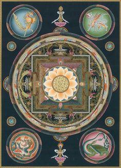 Four Guardians - Azure Dragon, White Tiger, Black Turtle, Vermillion Phoenix, 四神, 四像 Tibetan Mandala, Tibetan Art, Tibetan Buddhism, Buddhist Art, Mandala Drawing, Mandala Art, Tibetan Symbols, Vajrayana Buddhism, Chakras