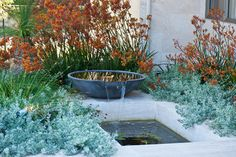 Inspiration -  Cultivart Landscape Design's Design Ideas, Pictures, Remodel, and Decor - page 3