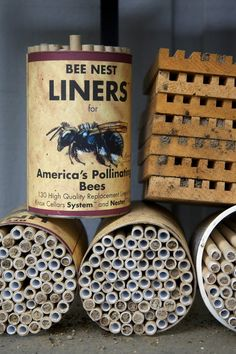 mason bee liners help out where you can we need the bees ~~~