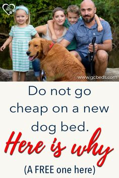 Learn what all goes into a good dog bed in order to combine comfort and value (and avoid probmls with smells or even sickness) and enter the context to win one for free Cute Dog Beds, Cute Dogs, Largest Great Dane, Personalized Dog Beds, Indestructable Dog Bed, Dog Rooms, Mistakes, Dog Food Recipes, Your Pet