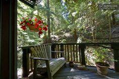 Redwood Treehouse Santa Cruz Mtns. | Airbnb Mobile