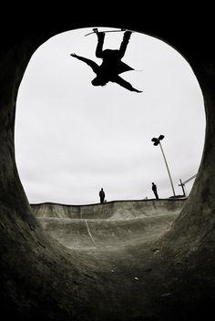 Un murciélago patinador!