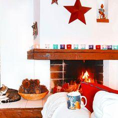Pumpkin Spice Latte, Shrek, Norman, Netflix, Coffee, Disney, Day, Animals, Furniture