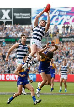best afl marks of all time Jimmy Bartel, Australian Football League, West Coast Eagles, Western Bulldogs, Most Popular Sports, Sports Activities, Football Team, Knight Shield, Nba Pictures
