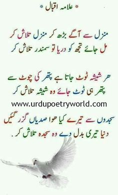 Hello، Welcome to Urdu Poetry world, Here You Can Find Every Type Of Poetry Latest Collections which you can Read Online. Stay Update with Urdu Poetry World. Urdu Funny Poetry, Poetry Quotes In Urdu, Best Urdu Poetry Images, Urdu Poetry Romantic, Love Poetry Urdu, Iqbal Poetry In Urdu, Qoutes, Inspirational Quotes In Urdu, Urdu Quotes With Images