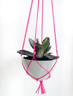 DIY: Pink Macrame Plant Hanger by Izabella Simmons