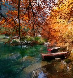 The clear water, the turning autumn leaves, the rowboats...wow!